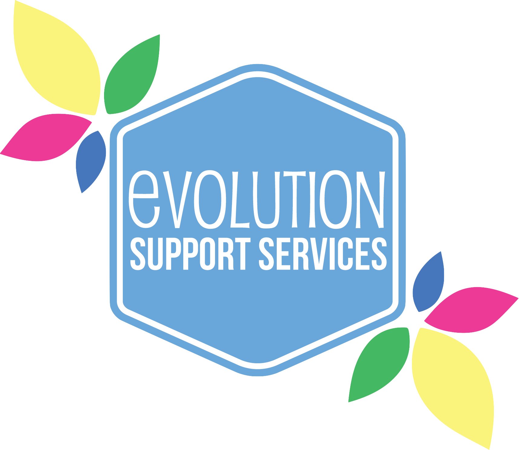 Evolution Support Services
